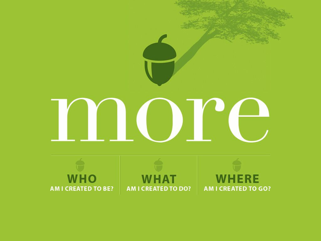 New Message Series: More